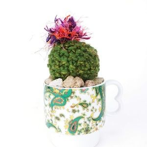 Other - Crochet flowering Cactus in a Paisley Tea Cup